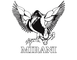 Mirani Magpies Grand Finalists